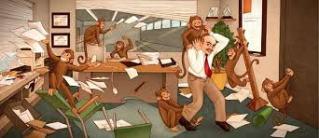 crazy office monkey
