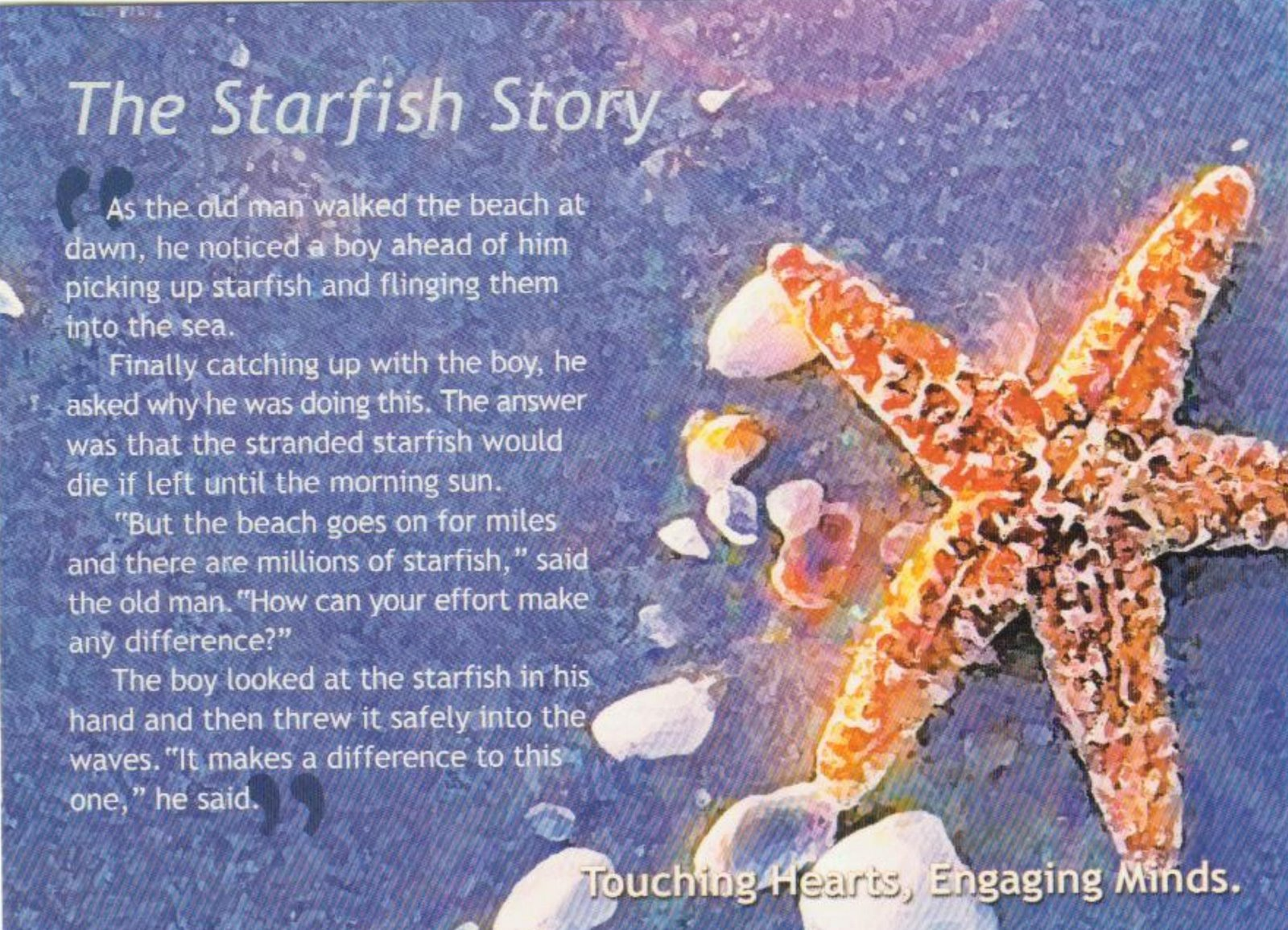 The Starfish Story 2